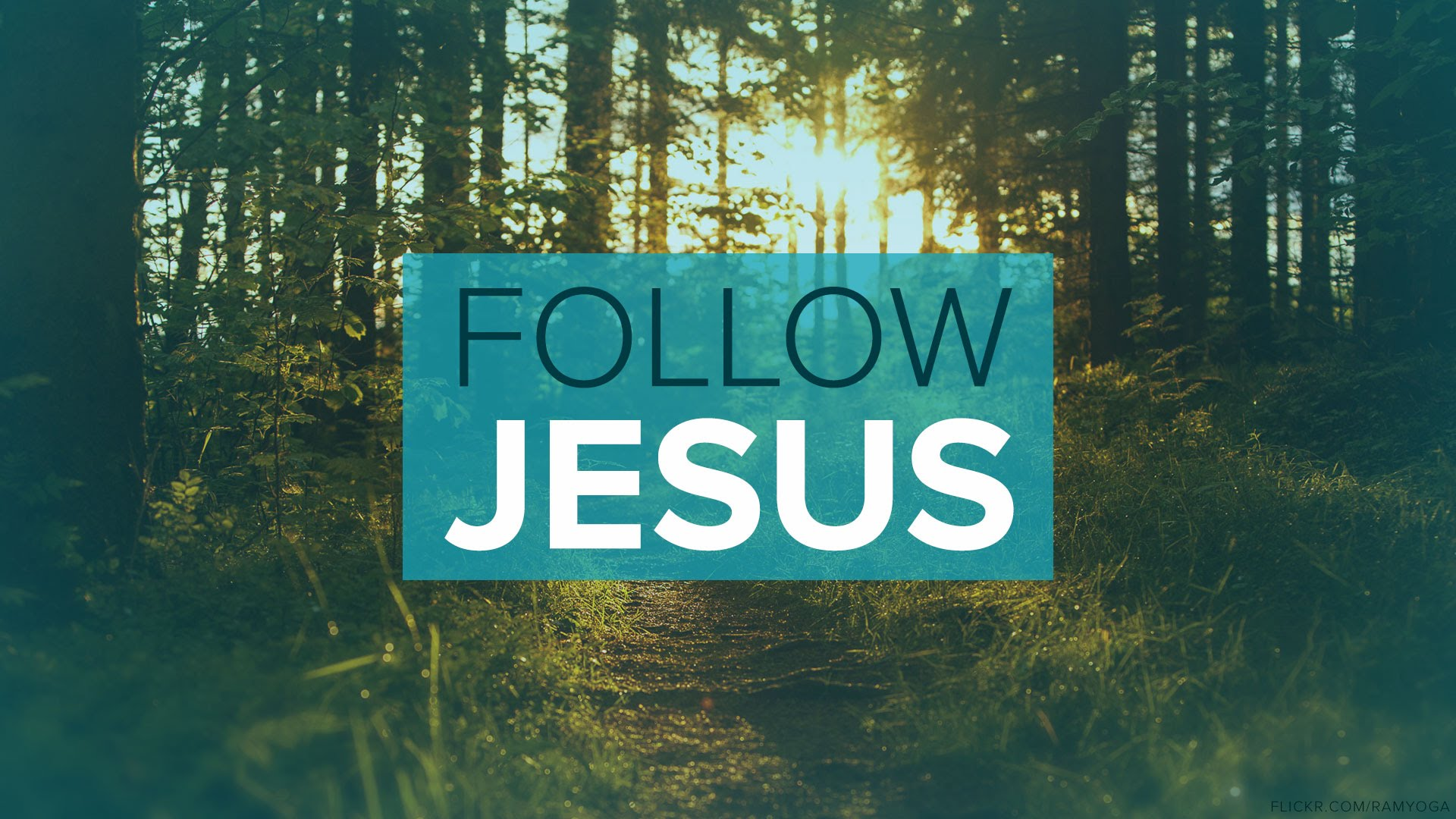 As YOU Follow Jesus, Let Him lead YOU To God's Will!